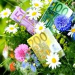 Geld im Blumenstrauss