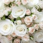 Klassischer Bautstrauss weisse Rosen