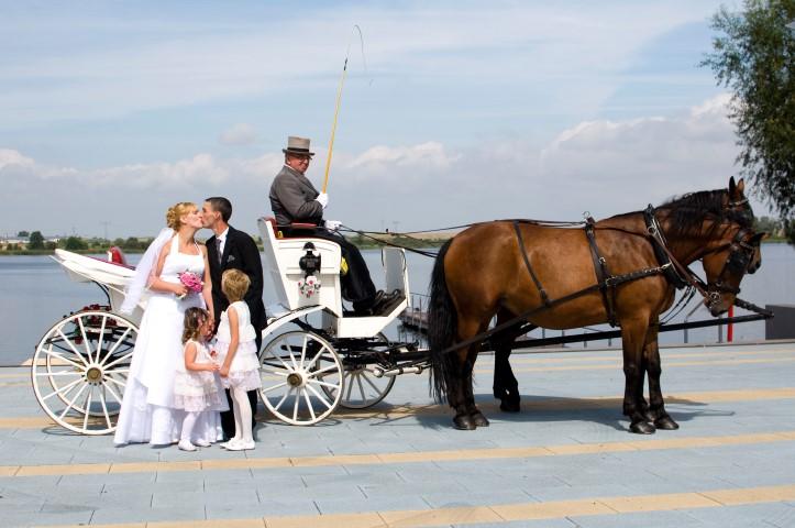 Brautpaar vor der Kutsche